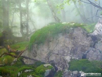 Urbasa-Andía;Aizkorri-Aratz;Aralar; parque nacional pirineos agencia viajes alternativos agencias v